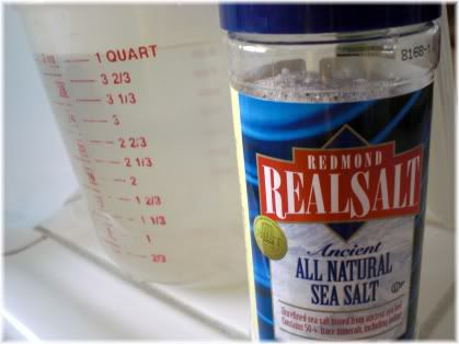 sea salt and water
