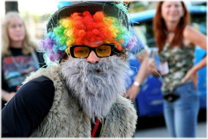 man wearing colored wig, glasses and fake beard.