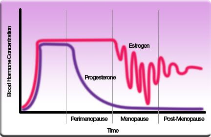 menopause stages