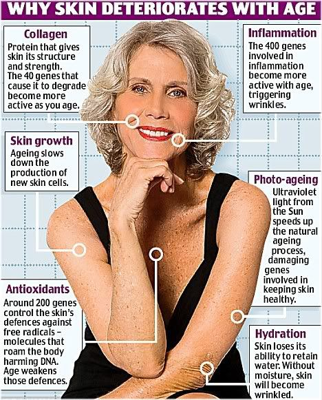 why skin ages