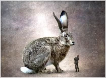 Giant rabbit small man