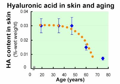 hyaluronic acid levels